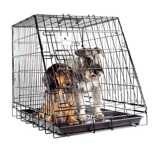 aula para Perro plegable 77cm Adaptada a porton trasero Coche, jaula para perros de caza, jaula maletero para perros, jaula para transportar perros en el coche