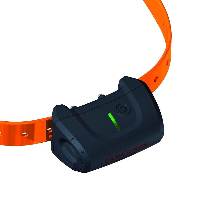Collar adicional canicom  5.1500 Collar adiestramiento perro, collar extra 5.1500, collar suplementario 5.1500
