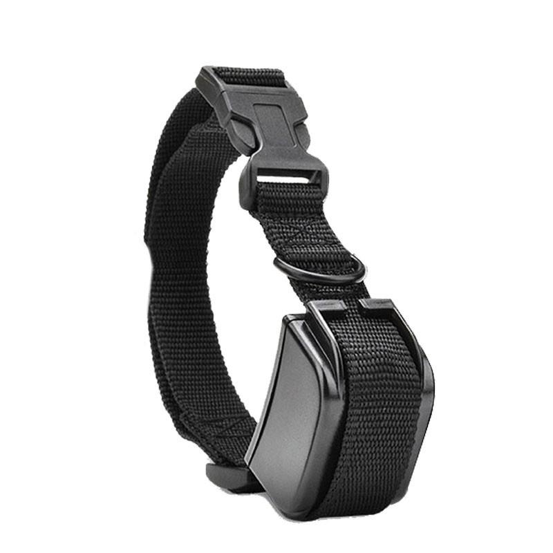 Collar adicional collar adiestramiento Dogsafe 100 niveles x821-C a pilas