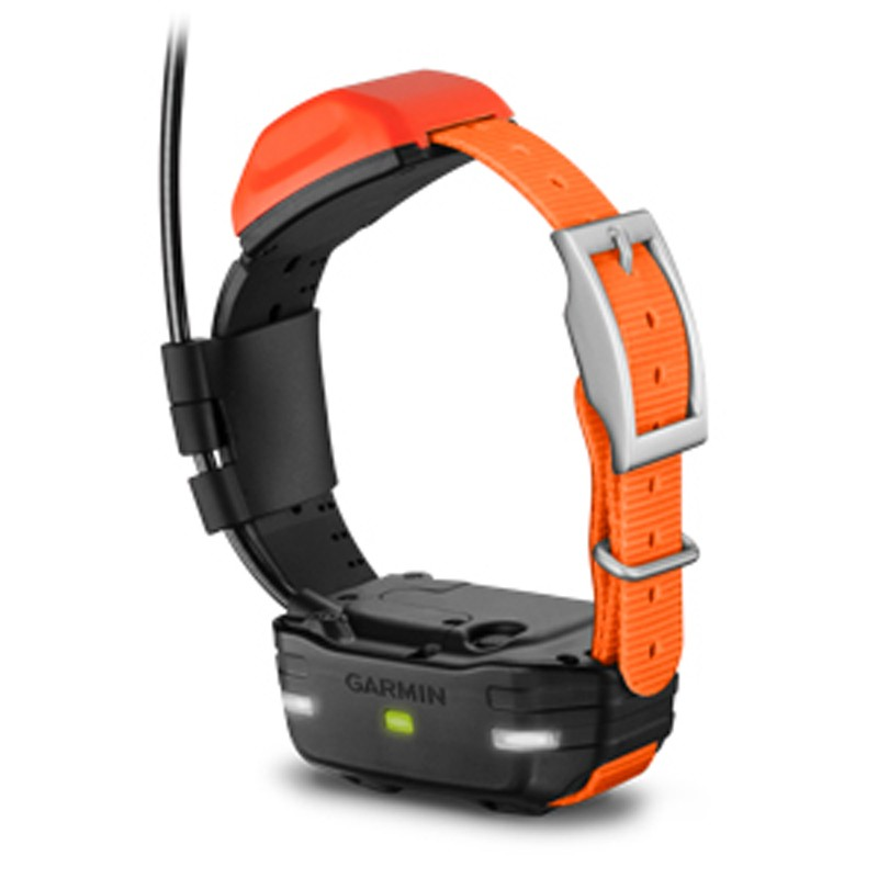 Collares Garmin T5 mini adicionales extra dispositivo GPS perros pequeños Astro y Alpha comprar mejor precio
