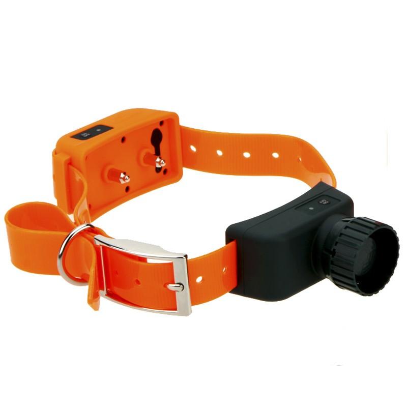 comprar Collar adicional Dogsafe localizador + Becada mejor precio, collar complementario, collar extra becada