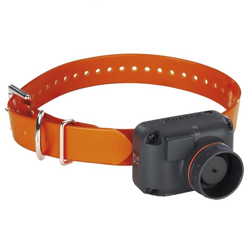 Dogtra STB Collar becada 4 sonidos perros caza
