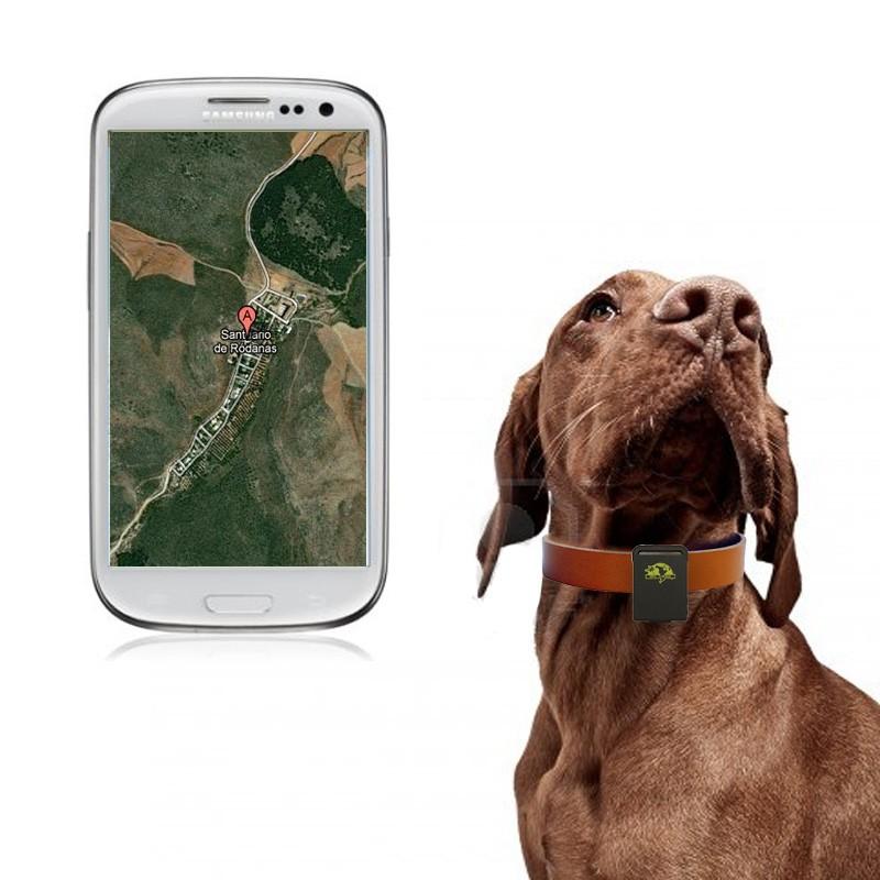 GPS para Perros / Localizador de perros