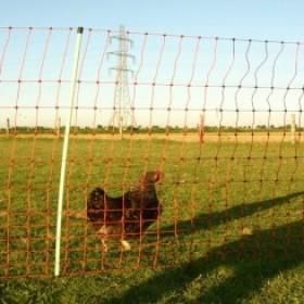 Valla eléctrica para gallinas