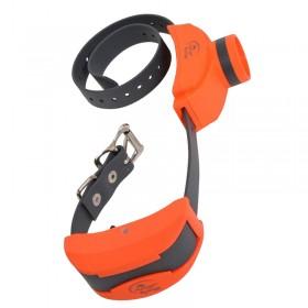 Sportdog SD-1875 Collar Adicional extra suplementario adiestramiento + becada beeper