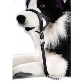 Collar Bozal adiestramiento antitiones guiador controlador Dogway