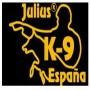 Correa ramal de policía de cuero Julius k9